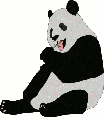 bear large panda eating