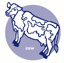 cow cow icon