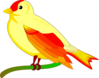 bird of peace mauro oliv 01 clip art
