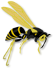flying wasp gerald g  01 clip art