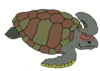 sea turtle 2 clip art