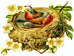 three-birds-nest-leaves