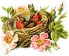 bird-nest 1 clip art