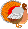 turkey bright clip art