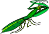 preying mantis clip art