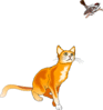 cat watching bird clip art