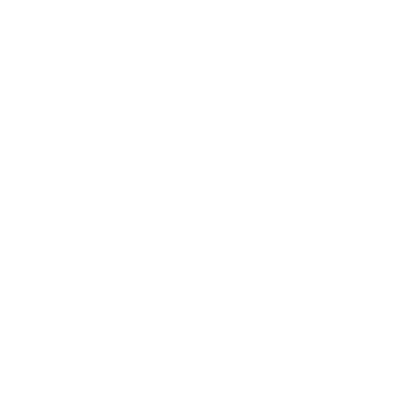 lion head BW