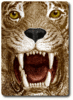 tiger card clip art