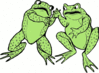 frog two frogs clip art