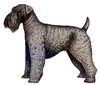 Kerry Blue Terrier clip art
