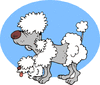 aging poodle toon clip art