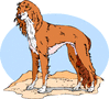 majestic collie clip art