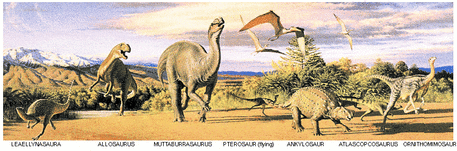 Early Cretaceous