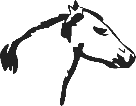 horse head simple sketch