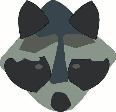 raccoon face abstract