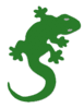 lizard icon green clip art