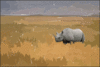 rhinoceros rhino on savannah clip art