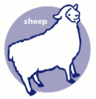 sheep icon clip art