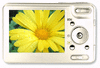 digital camera viewer clip art