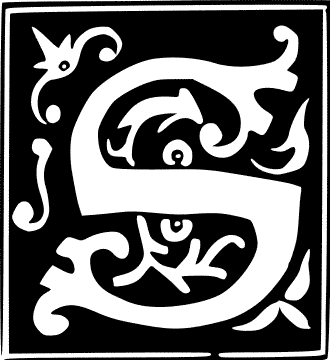 decorative letter S