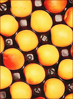 apricot packed
