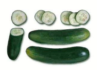 cucumbers 1