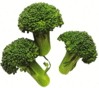 broccoli 3 clip art