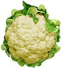 cauliflower 1 clip art