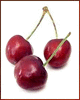 cherries 3 clip art