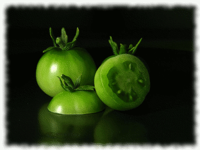 green tomatoes picture