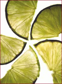 lime wedges 2