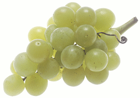 grapes large