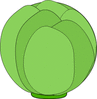 head of cabbage clip art
