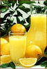 oranges juice clip art