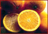 oranges mood clip art
