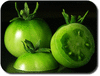 tomatoes green clip art