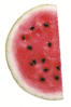 watermelon half slice clip art