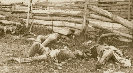 Antietiam Dead at Antietam 3