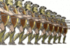 Greek Phalanx clip art