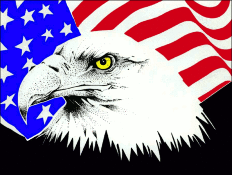 4th July eagle flag