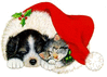 christmas cat dog hat clip art