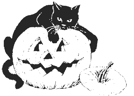 Halloween black cat pumpkin
