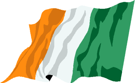 saint patricks day FLAG2