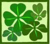 saint patricks day Four Leaf Clovers 2 clip art