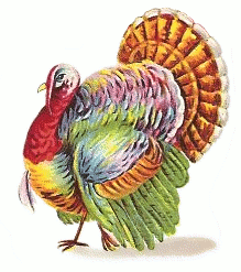 thanks giving turkey colorful