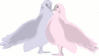 wedding blue and pink doves clip art