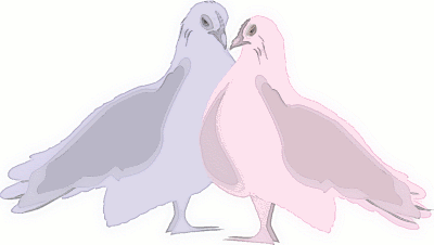wedding blue and pink doves