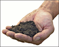 agriculture soil