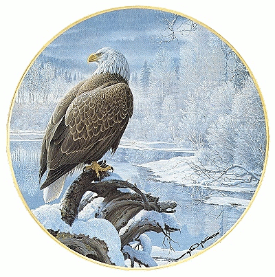 US military eagle by frozen lake