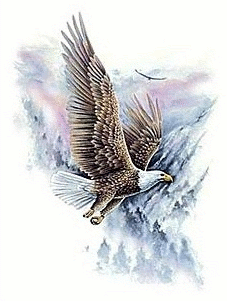 US military soaring eagle